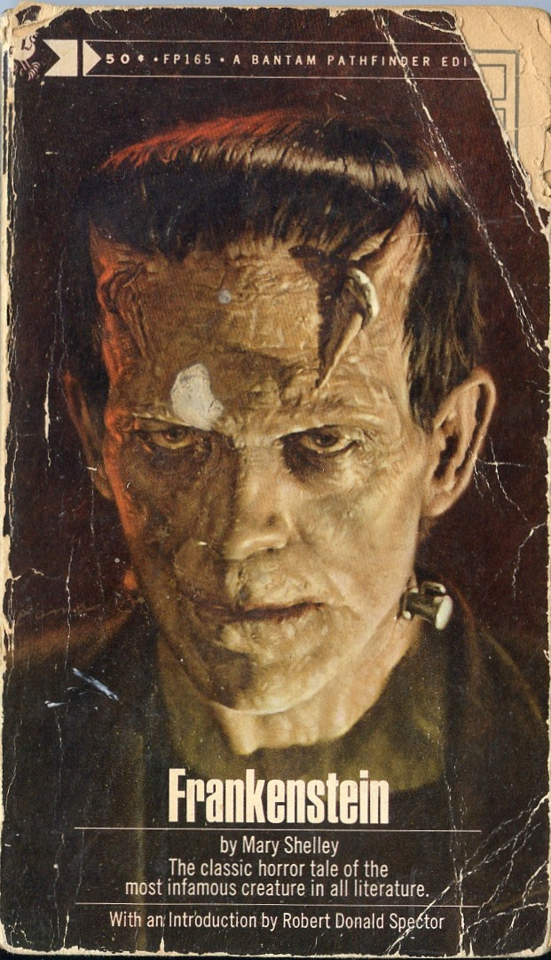 Frankenstein by Mary Shelley. We had this copy in the ...