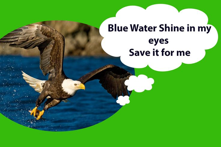 6 Best Slogans Poster on Save Water Free Download