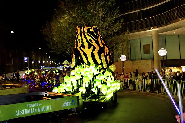 Stand Up For Corroboree Frog