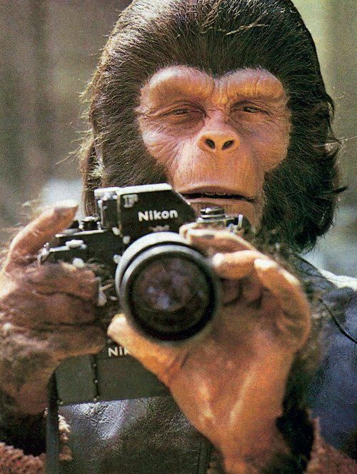 Roddy McDowall on the set of 'Planet of the Apes'.