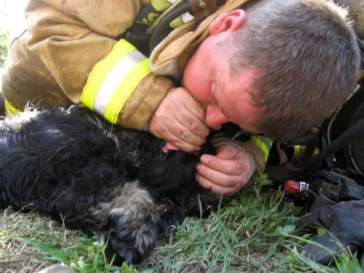 After Kissimmee firefighters -- reportedly all animal lovers -- rescued two dogs from a fire, Engineer Gary LaTour revived one with mouth to snout resuscitation.
