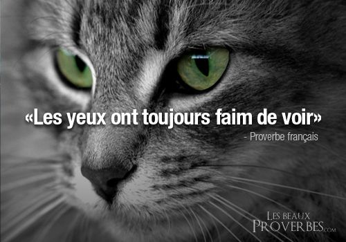 Les Beaux Proverbes – Proverbes, citations et pensées positives » » Les yeux