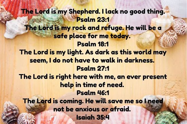 The Lord is my Shepherd. I lack no good thing. Psalm 23:1 The Lord is my rock and refuge. He will be a safe place for me today. Psalm 18:1 The Lord is my light. As dark as this world may seem, I do not have to walk in darkness. Psalm 27:1 The Lord is right here with me, an ever present help in time of need. Psalm 46:1 The Lord is coming. He will save me so I need not be anxious or afraid. Isaiah 35:4