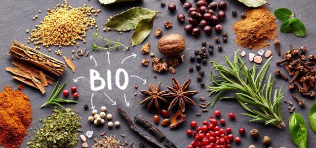 Bio Gewürze kaufen: die wichtigsten Marken und Online-Shops, Gewürze, Spices, Herbs