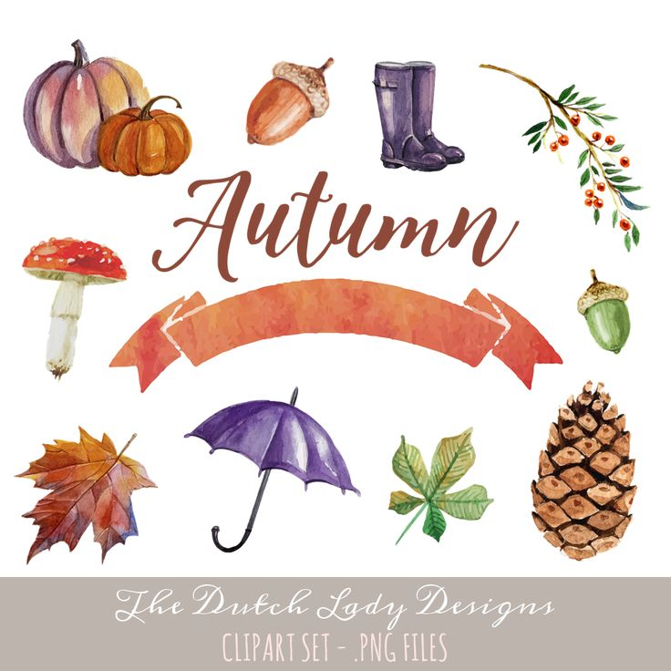 Autumnal Clipart Set - find it here: https://www.etsy.com/listing/256125626