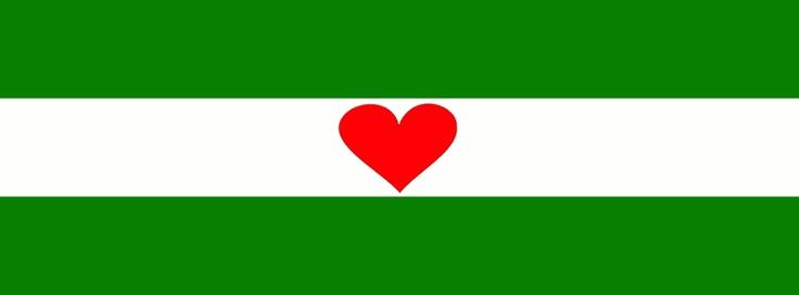 Rotterdam vlag met hartje
