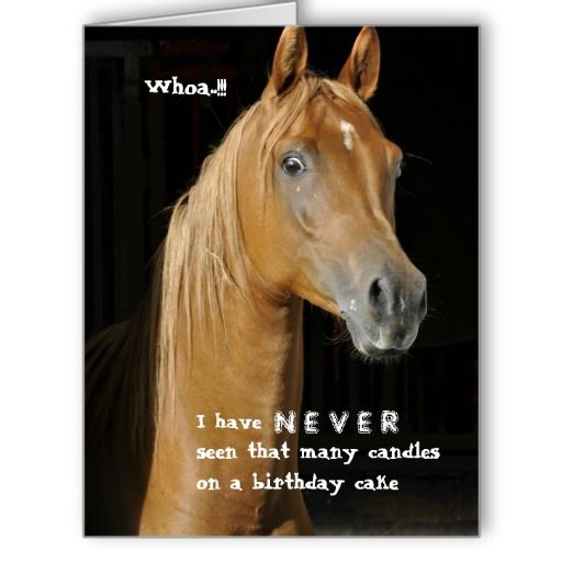 Horses Toys For Girls Birthdays : Best images about horse birthday quotes on pinterest