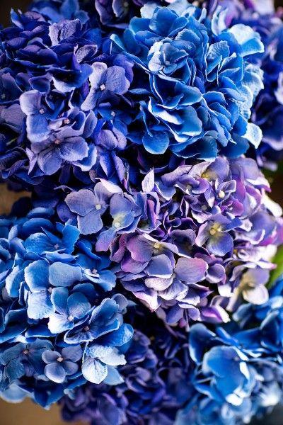 Nordic blue collection - Silk-ka
