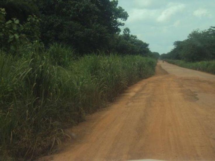 Guinée forestière: La hausse des frais de transport routier à Kissidougou