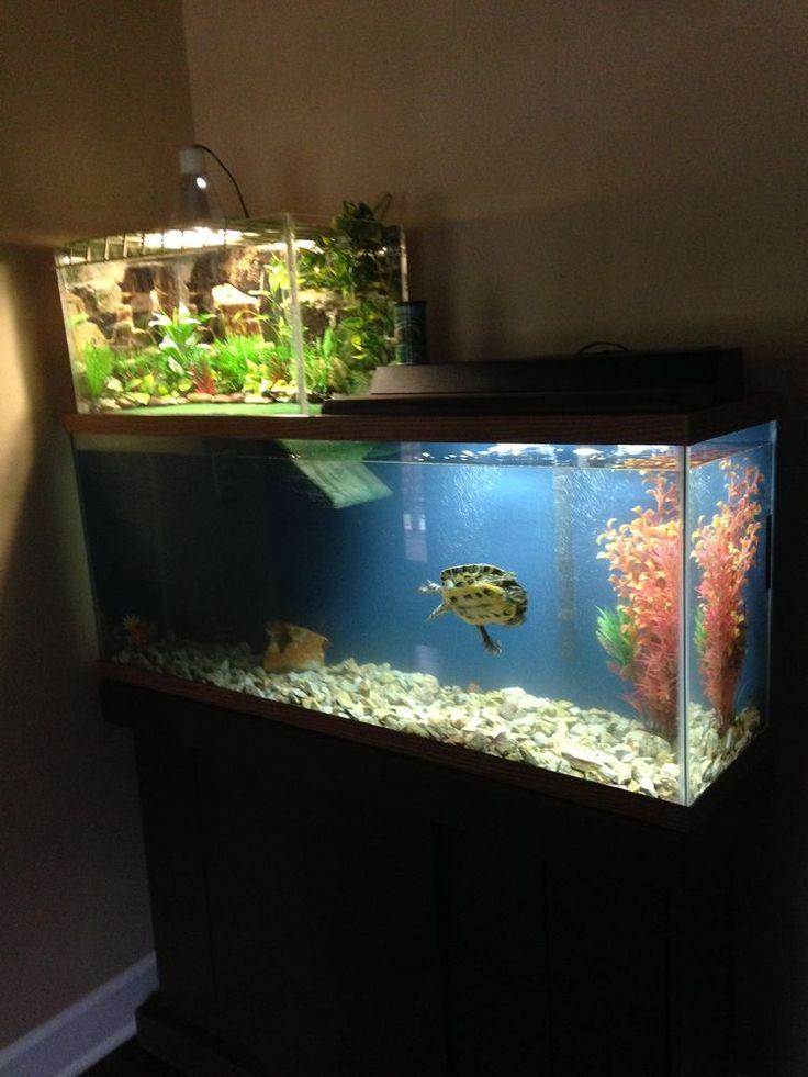 37 best turtle topper above tank basking platform images for Fish tank turtles