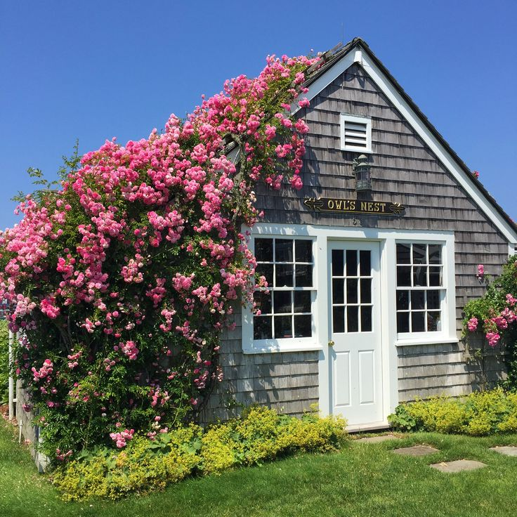 Things To Do In Cape Cod In July: 2678 Best Cape Cod/Nantucket Islands And Homes Images On