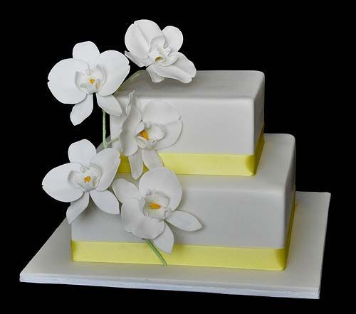 Elegant two tier square white and yellow theme orchid wedding cake garnished with white Phalaenopsis Orchids