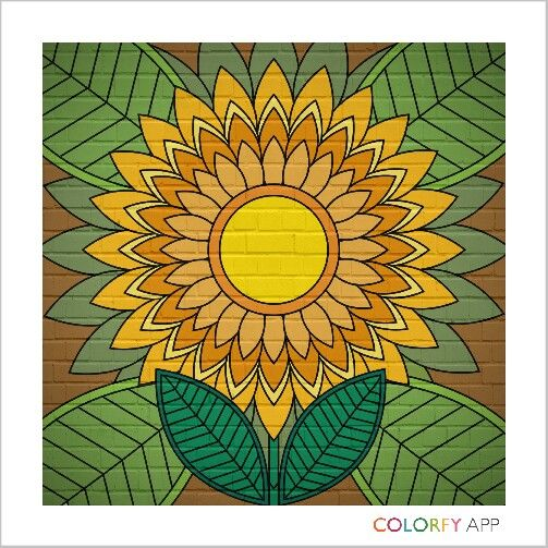 sun flower 4th #colorfy