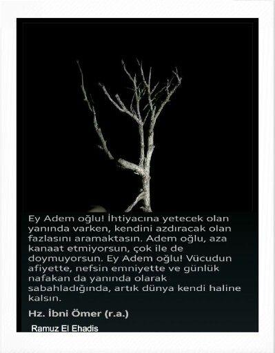 Ey Adem oğlu. .