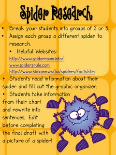 spider sheets, perfect for my inquiry part of reading comprehension