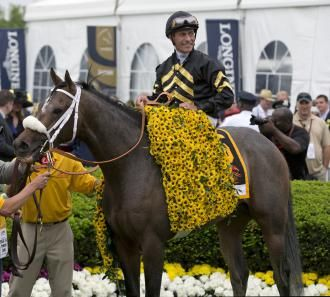 Oxbow after winning the 2013 Preakness