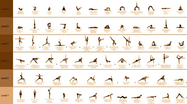 Google Image Result for http://what-is-yoga.com/wp-content/uploads/2011/01/yoga-sequence1.gif