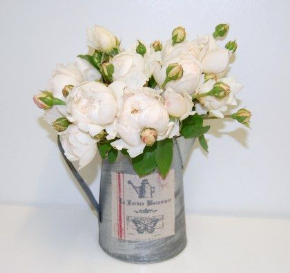 Mothers Day Flower Tin Norwest FLorist