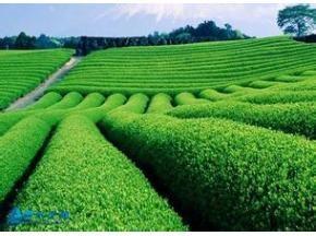 Europe Center Pivot Irrigation System Market Report 2016