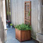 Crafted of wood, the Coral Coast Halstead Wood Planter Trellis features a traditional planter box with an attached trellis so it's ideal for...