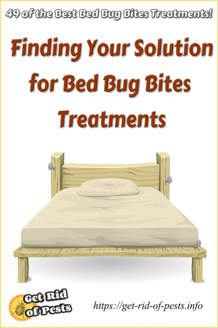 bugs cristaloliver docs issuu advancepest vancouver bed control by bug ca cristal page solution oliver