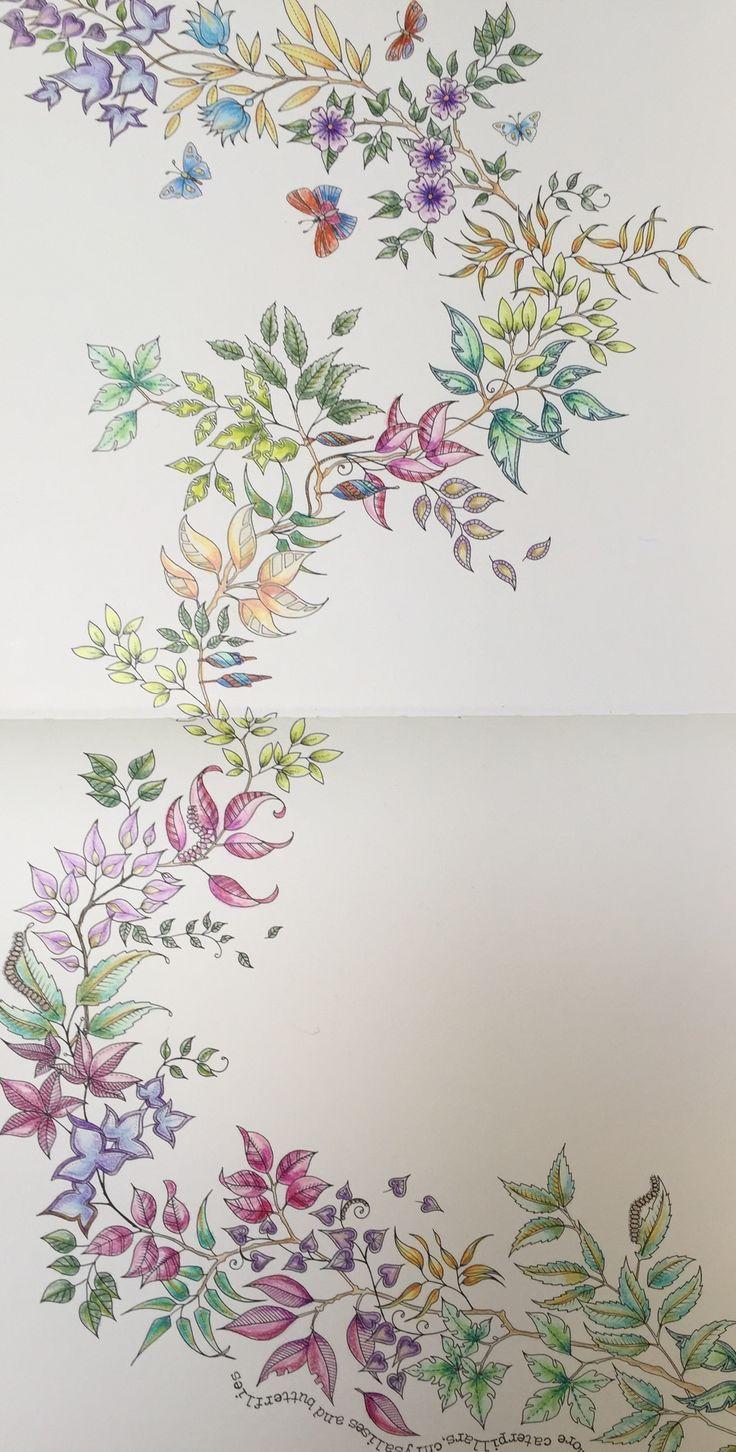 335 best johanna basford images on pinterest mandalas drawings