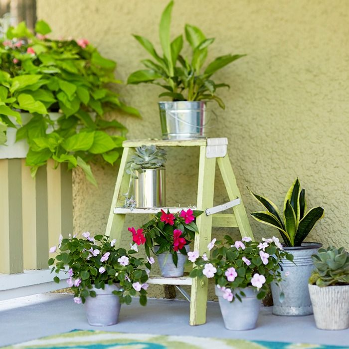 Add curb appeal to your home's exterior with an arrangement of container plants. A plain front porch becomes inviting with a display of small potted plants on a short stepladder.