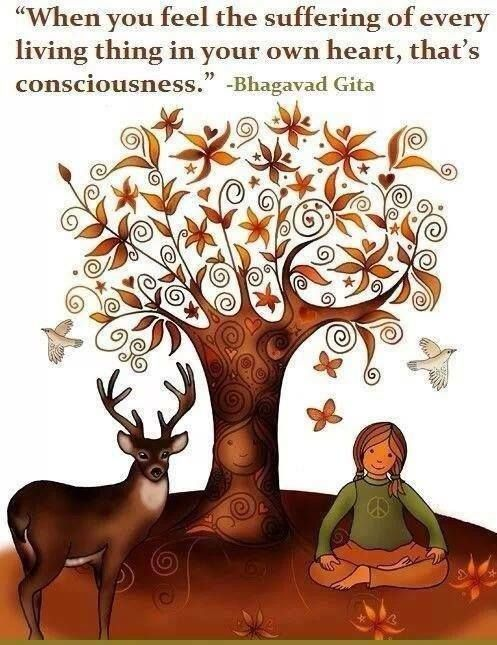 """""""When you feel the suffering of every living thing in your own heart, that's consciousness."""" - Bhagavad Gita"""