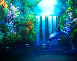 dolphins wallpaper - Google Search