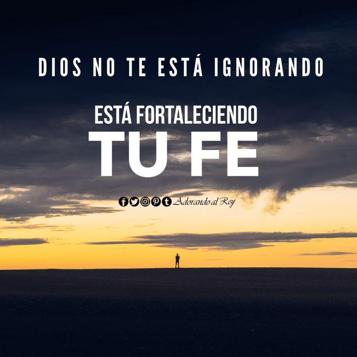Dios NO te está ignorando