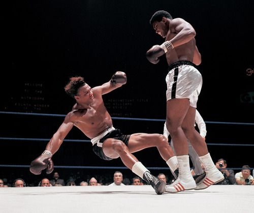 Muhammad Ali knocks out Cleveland Williams during round three of their 1966 fight at the Astrodome. (Neil Leifer/SI)  Gallery: The Best of Muhammad Ali
