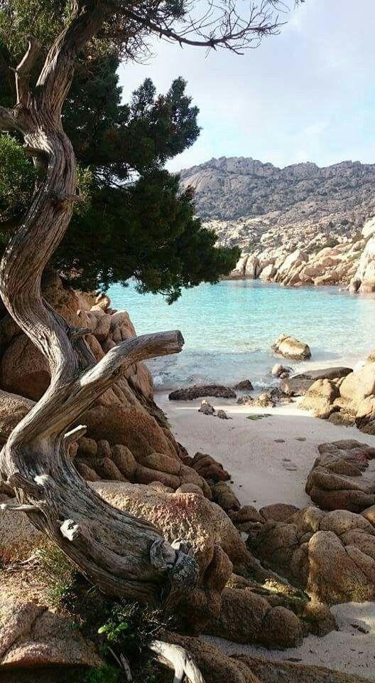 Cala Coticcio - Caprera. Sardinia/Cerdeña/Sardegna- 08 dicembre 2015.