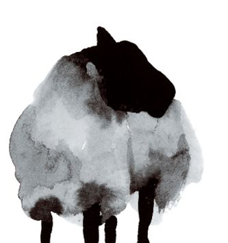 """Black Sheep"" notecard illustration 2015 Trend: Sheep www.houseandleisure.co.za"