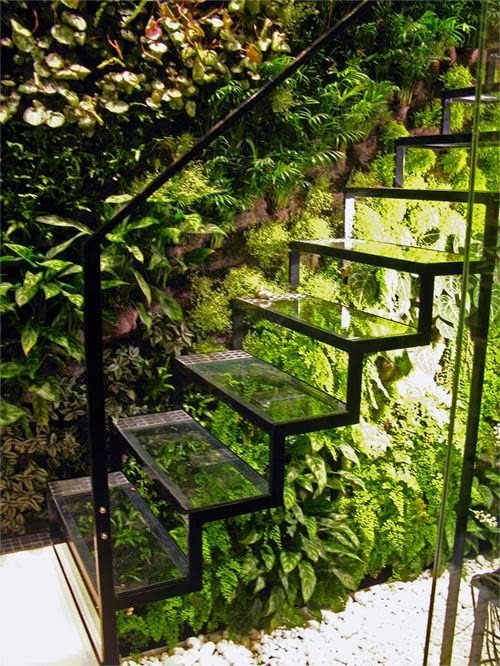 transparent stairs, dressed in fernery -- bejeweled in LIGHT