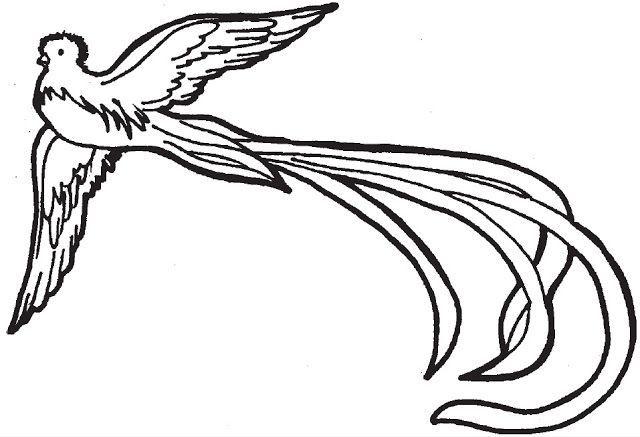 Resultado De Imagen De El Quetzal Para Colorear Con Imagenes