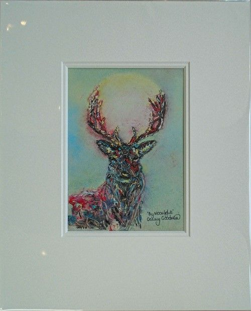 "Stag 3D  ""By Moonlight"" Limited Edition 16/75 by Genny Goodman"
