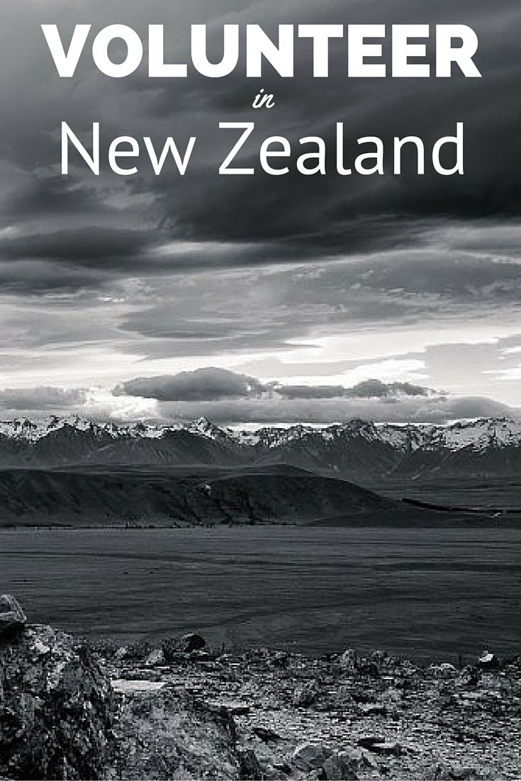 Find free and low-cost volunteering opportunities in New Zealand