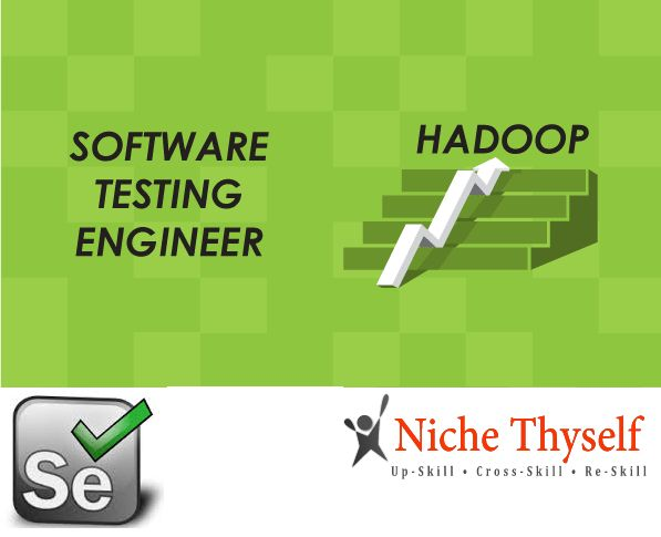 Niche Thyself offer online training services with experienced professionals in big data hadoop, Selenium, software testing etc..