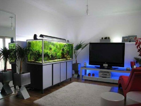 Living Room: Living Room Decorating Ideas Fish Tank Cool Ideas From Living  Room Decorating Ideas