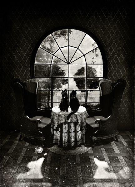 'Room Skull' by Ali Gulec.