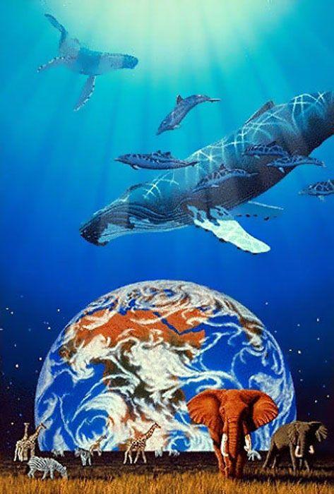 ONE EARTH ONE OCEAN by Schim Schimmel
