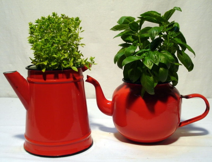red enamel teapots, coffee pots and kettles for plants - on rear fence