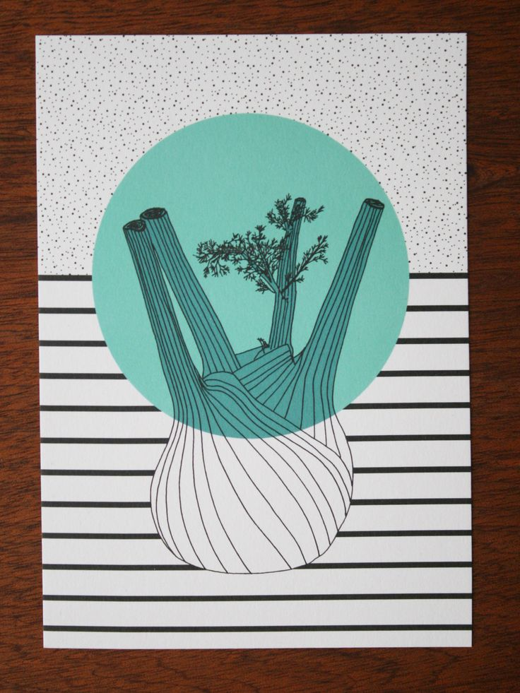 fennel illustratiion postcard - polypodium - graphic design - illustration - fennel - fenchel