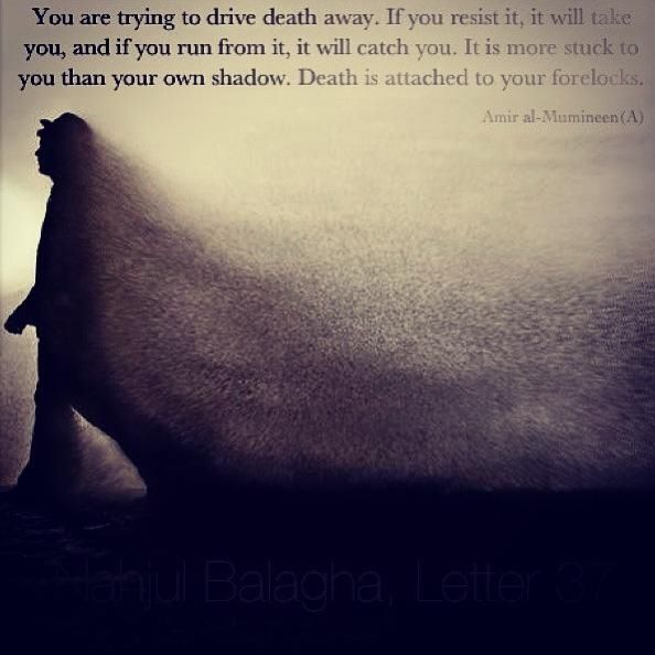 Imam Ali (a.s) quote about death