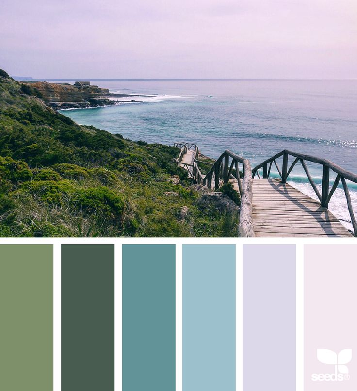 { color escape } image via: @crioch #color #palette #designseeds #design #seeds #seedscolor