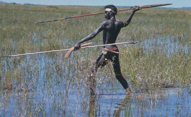 Australian Aborigine Spear Hunting