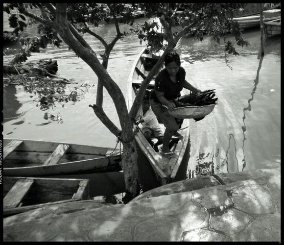 Fotografías de RENE GOMEZ OME : AGUAS DEL AMAZONAS - Galeria de imagenes - en Portfolios de Fotografia de Autor Colombia en Multimagen