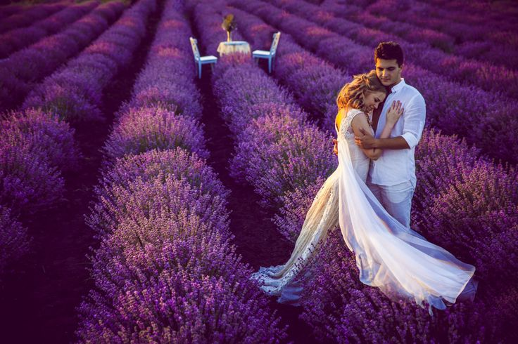 Peace. Love. Lavander. by Victor Detto