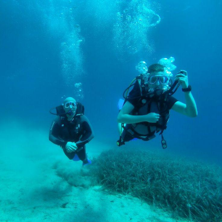 Ayvalık dalış okulu - ida dalış merkezi #scuba #scubadiving #diving #underwater #dalisnoktam #ayvalikdalis #daliskursu #dalisokulu #ayvalikscuba www.idadiving.com