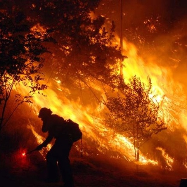 51 Best Fighting Wildfire Images On Pinterest